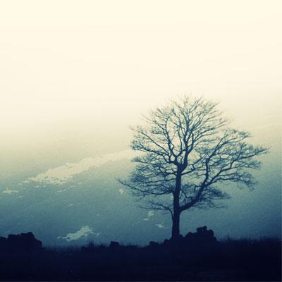 http://savaranmusic.files.wordpress.com/2011/01/hiddenlandscapes.jpg